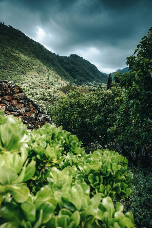 Gap Year Program - Pacific Discovery: Hawaii Semester Program  5