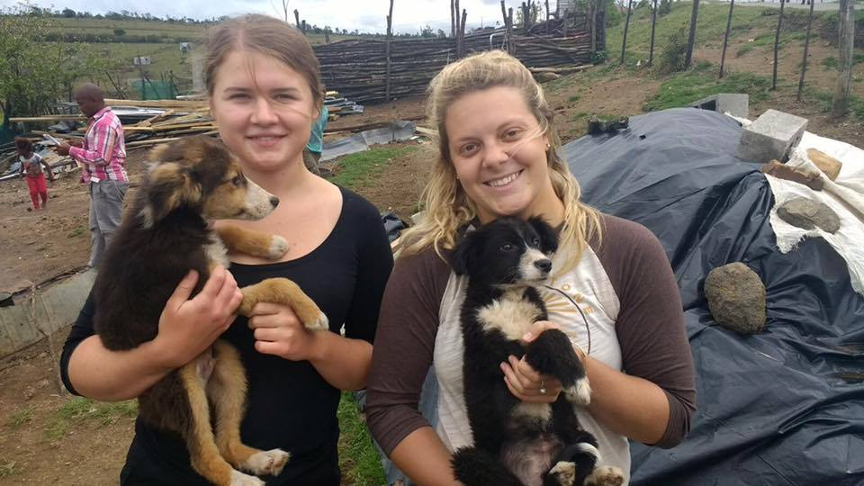 Oyster Worldwide – Pre-Veterinary Internship in South Africa