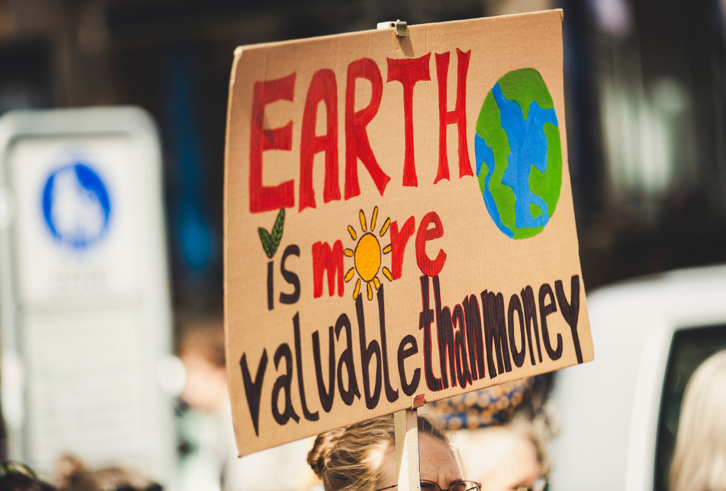 Gap Year Program - Volunteer in the UK and help fight the climate emergency  5