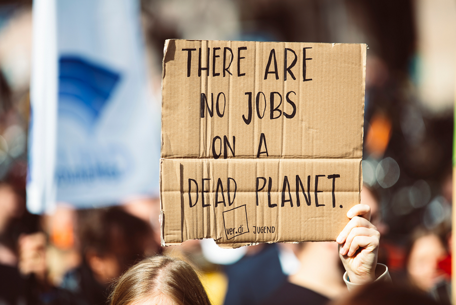 Gap Year Program - Volunteer in the UK and help fight the climate emergency  3