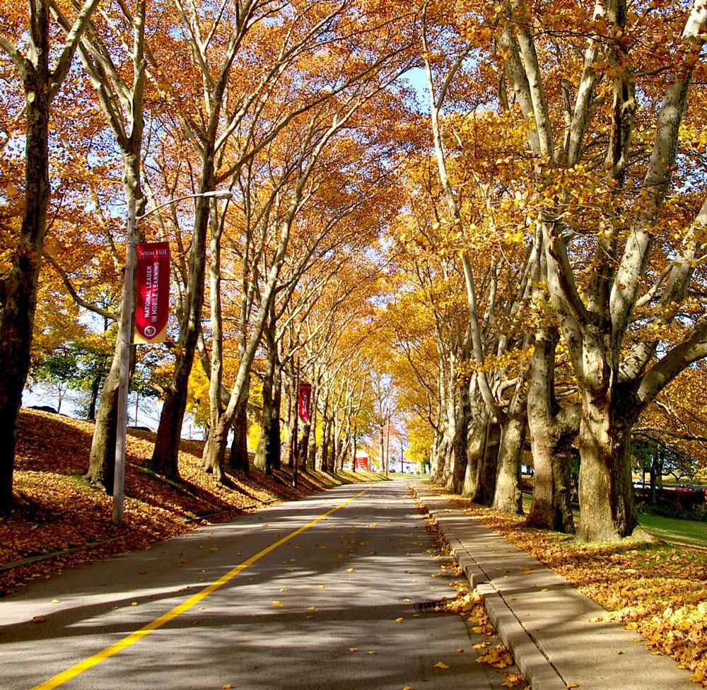 College - Seton Hill University  7