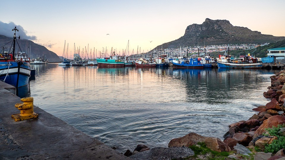 Gap Year Program - Loop Abroad: South Africa Wildlife and Conservation Semester Abroad  5