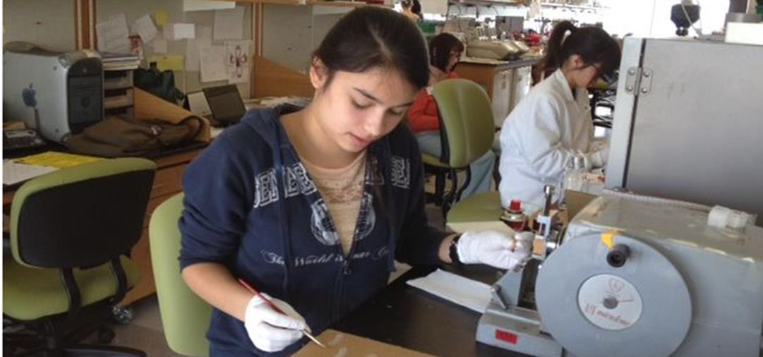 Summer Program - Bio Technology | Stem Cell Research Internship