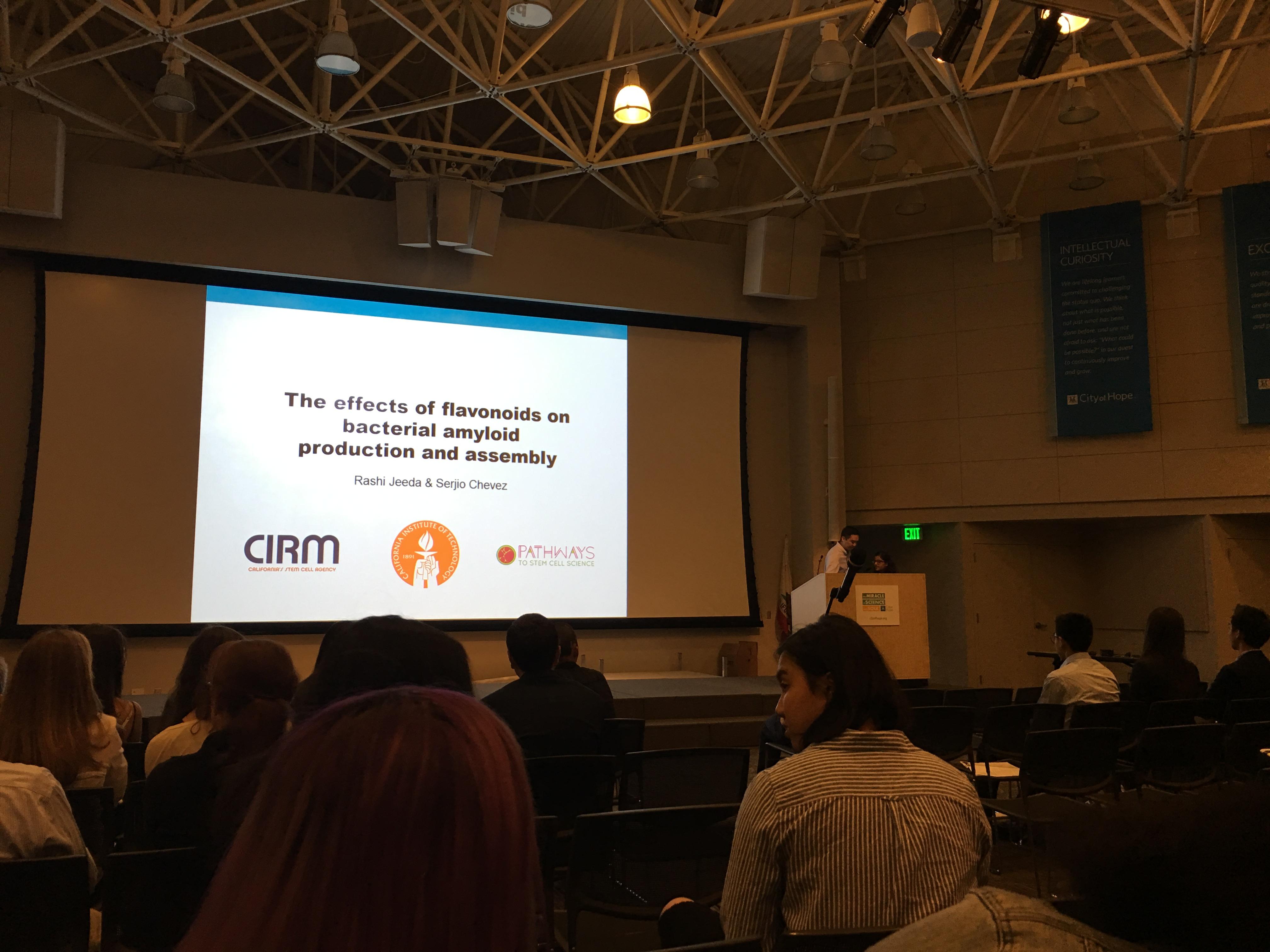 Summer Program - Engineering | Stem Cell Research Internship