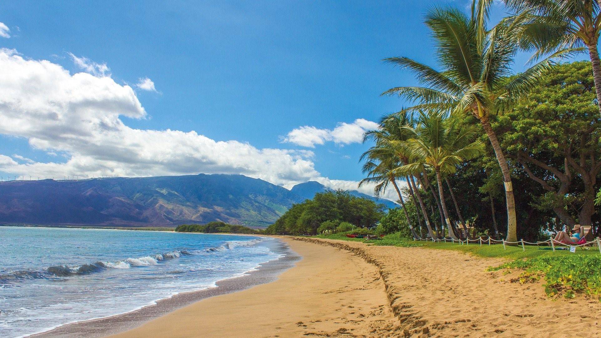 Summer Program - Environmental Conservation | Abbey Road Programs: Hawaiian Adventure