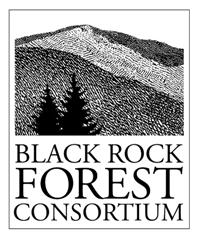Black Rock Forest: Summer Science Camp