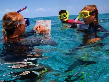 Cape Eleuthera Island School: Summer