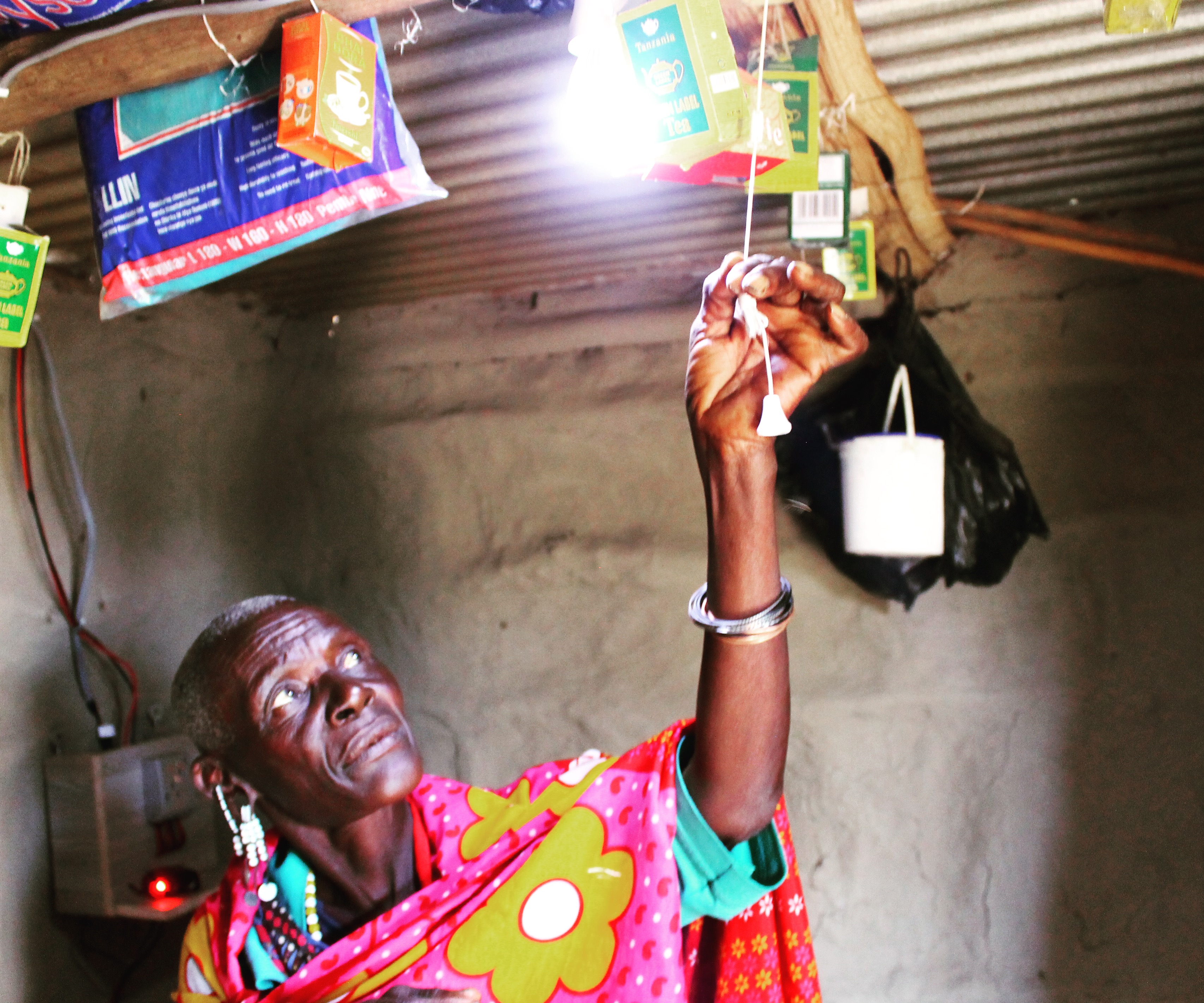 Summer Program -    ARCC Programs   Kenya & Tanzania: Lighting Lives
