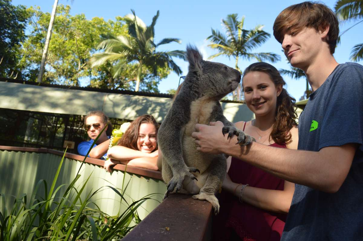 Summer Program - Travel And Tourism | Travel For Teens: Australia and New Zealand Service
