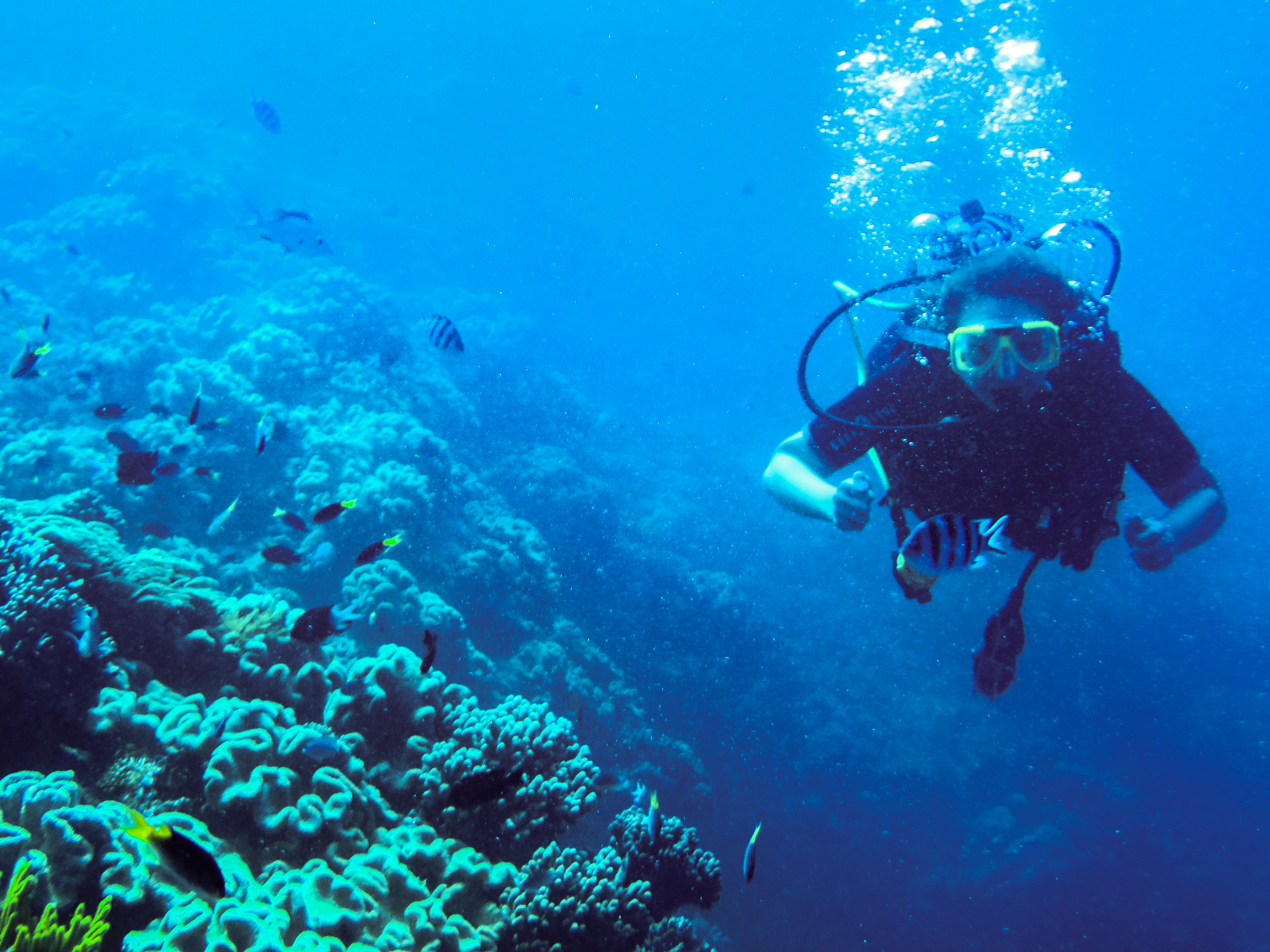 Summer Program - Preserving the Environment | Travel For Teens: Australia, New Zealand and Fiji Service