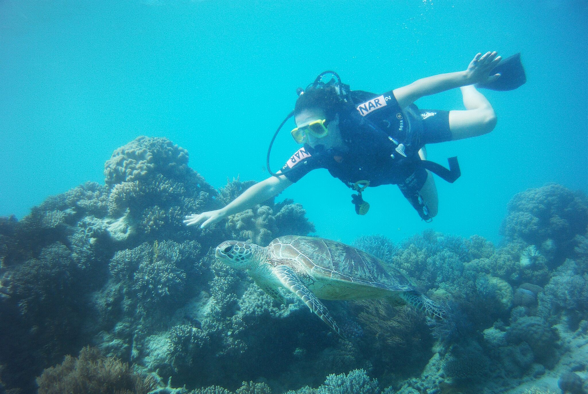 Summer Program - Tours | Travel For Teens: Fiji Scuba and Service