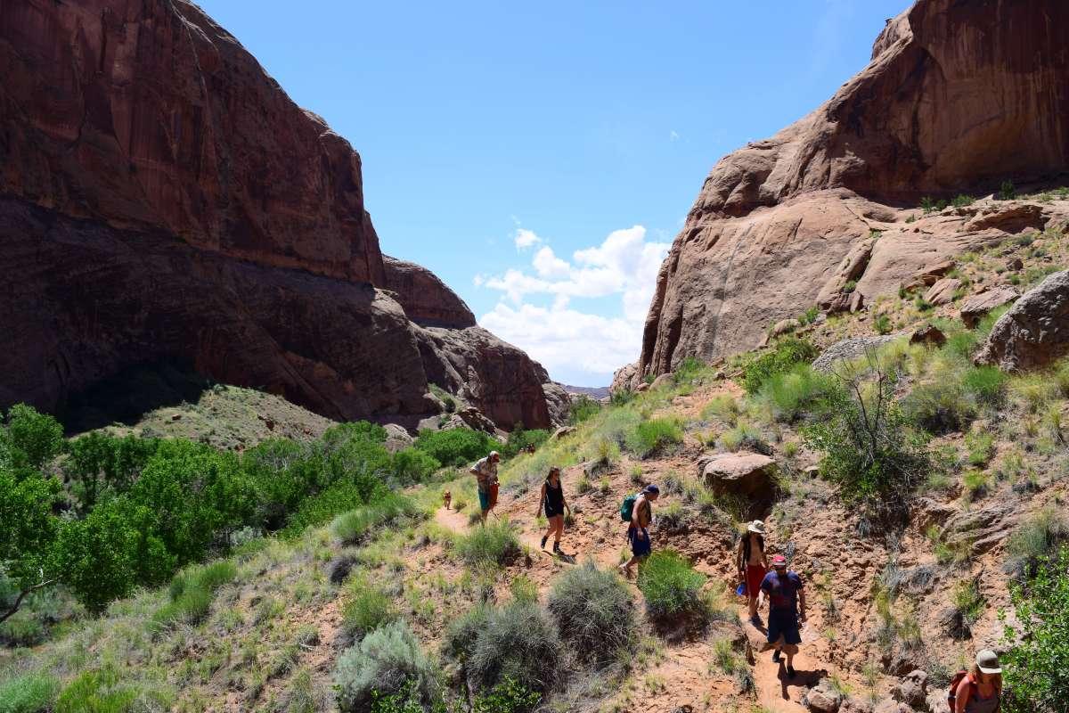 Summer Program - Adventure/Trips   Travel For Teens: USA Adventure