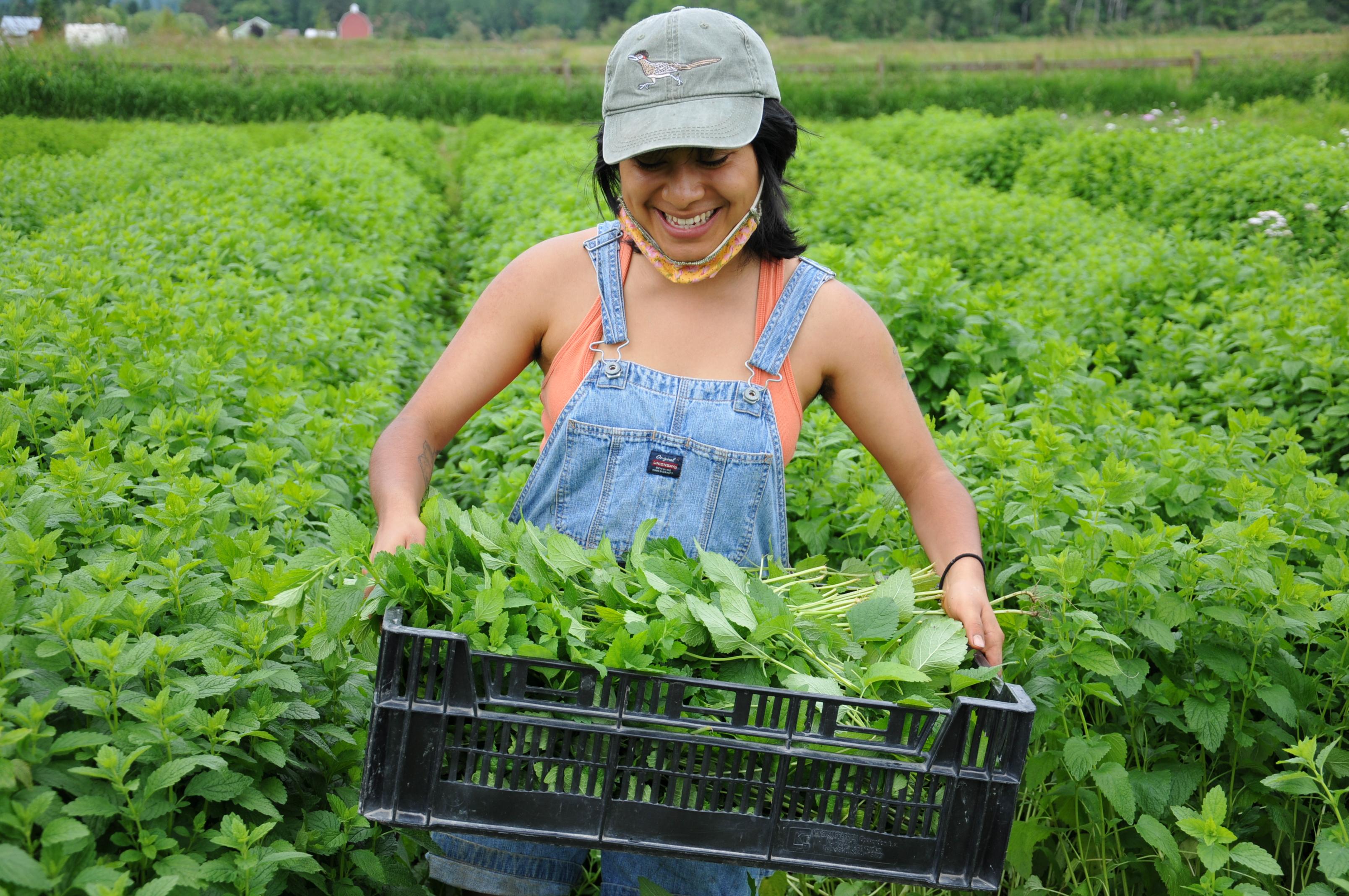 WWOOF: Travel, Live & Learn on Organic Farms