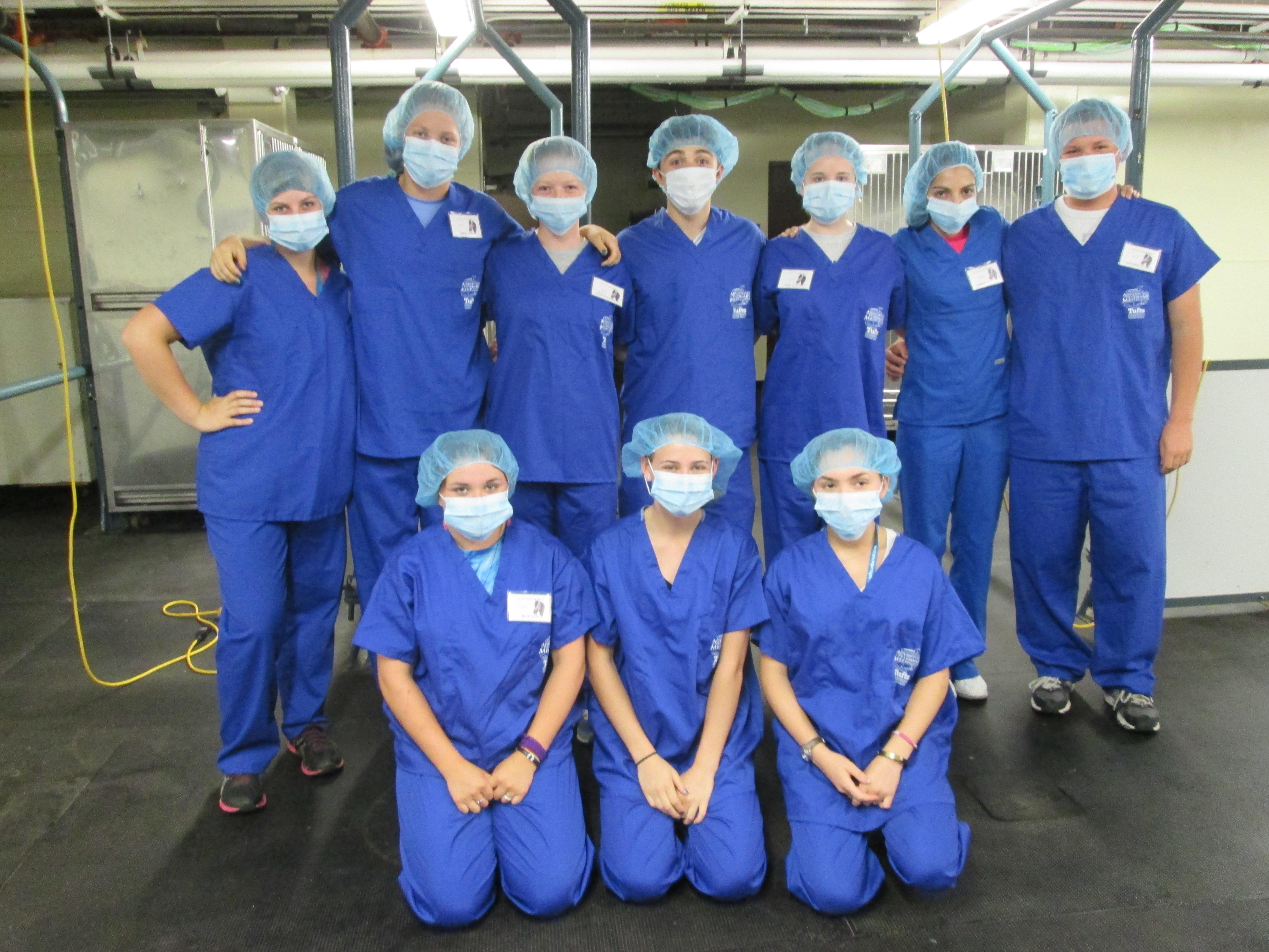 Summer Program - Veterinary Medicine | Tufts University: Adventures in Veterinary Medicine High School Program