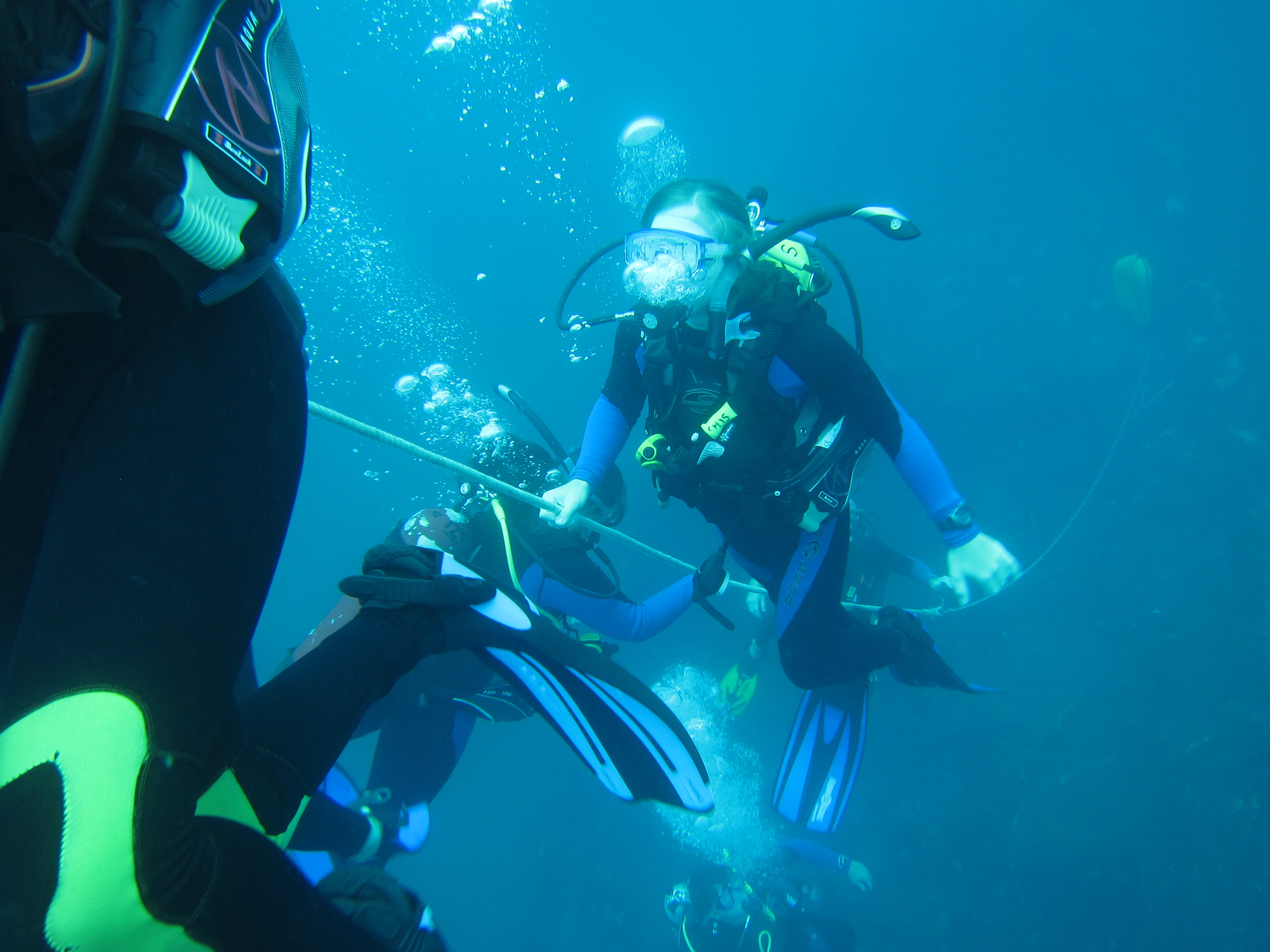 UNCW MarineQuest Summer Programs