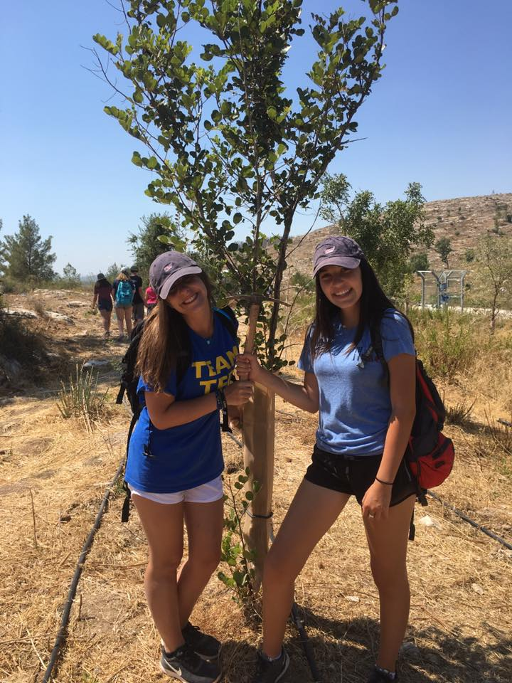 Summer Program - Jewish Culture | United Synagogue Youth: EPIC Israel