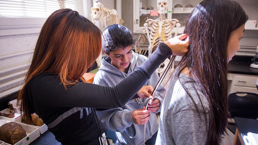 Summer Program - Psychology | University of Maryland: Terp Young Scholars (TYS)