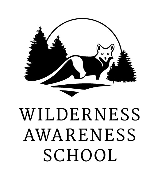 Wilderness Awareness School: Overnight Summer Camps