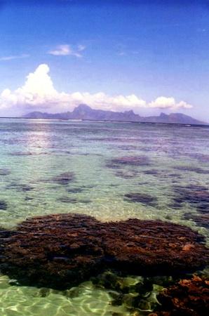 Summer Program - Group Travel | VISIONS Guadeloupe High School Service Program