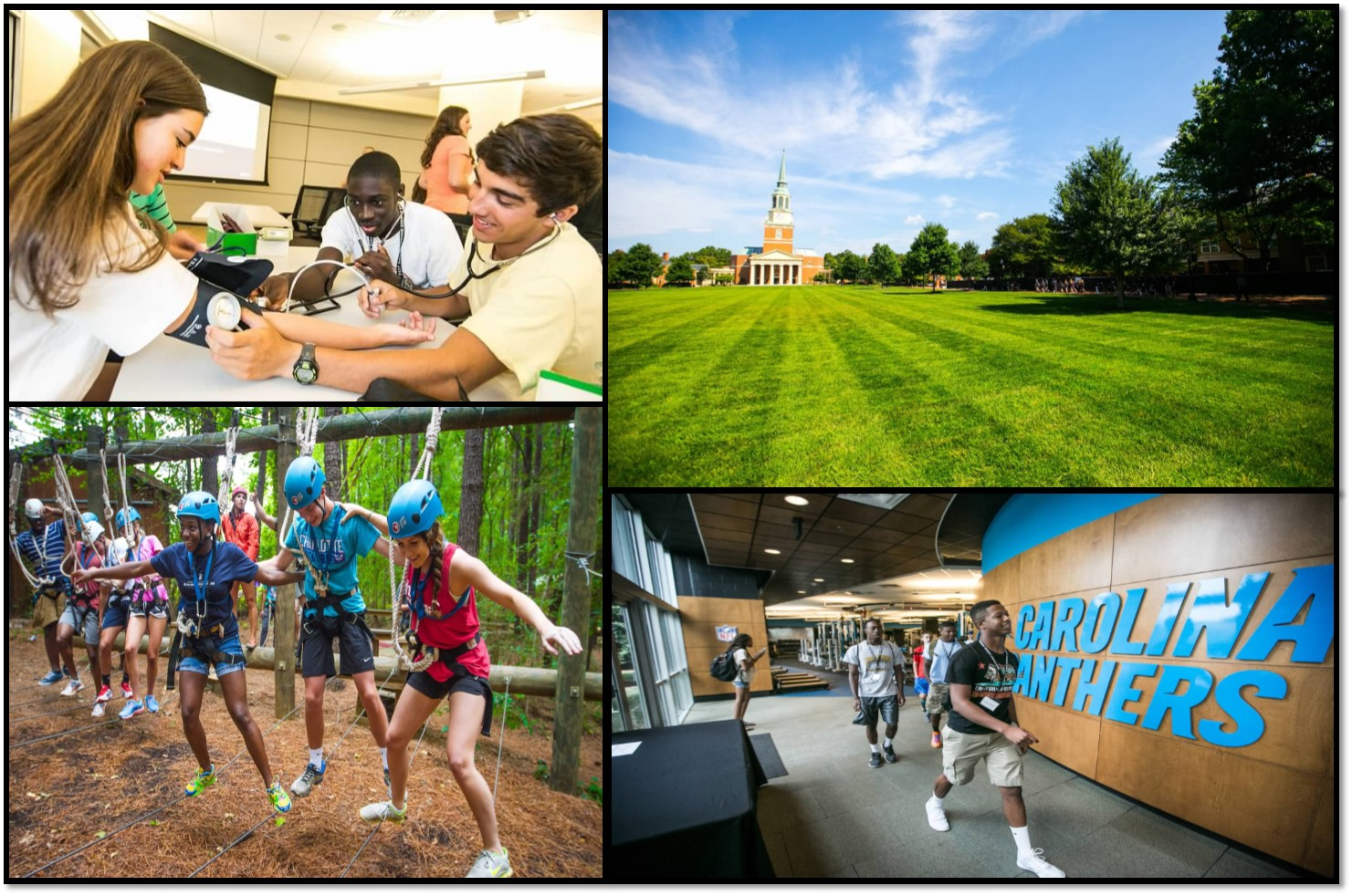 Summer Program - College Experience | Wake Forest University: Summer Immersion Program Online Experience
