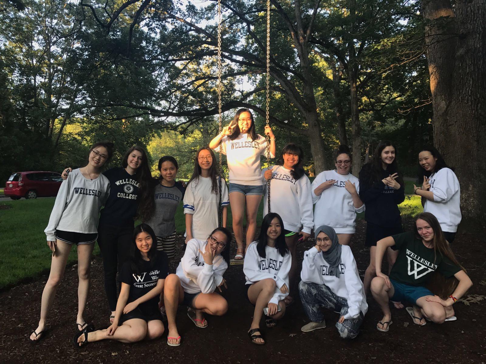 Summer Program - Sociology   Wellesley Pre-College: Summer Focus Program