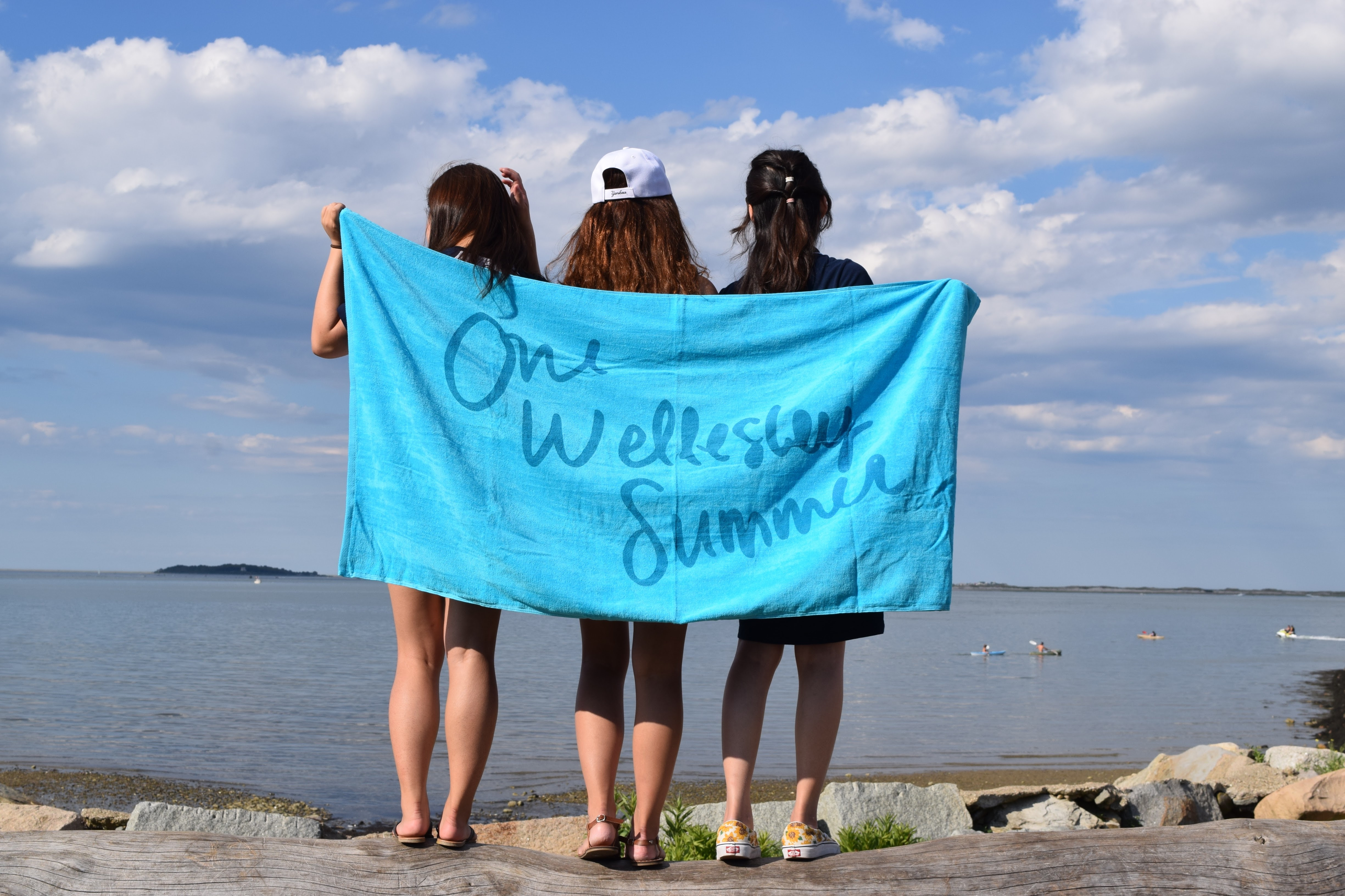 Summer Program - Science   Wellesley Pre-College Summer Focus: STEM Courses