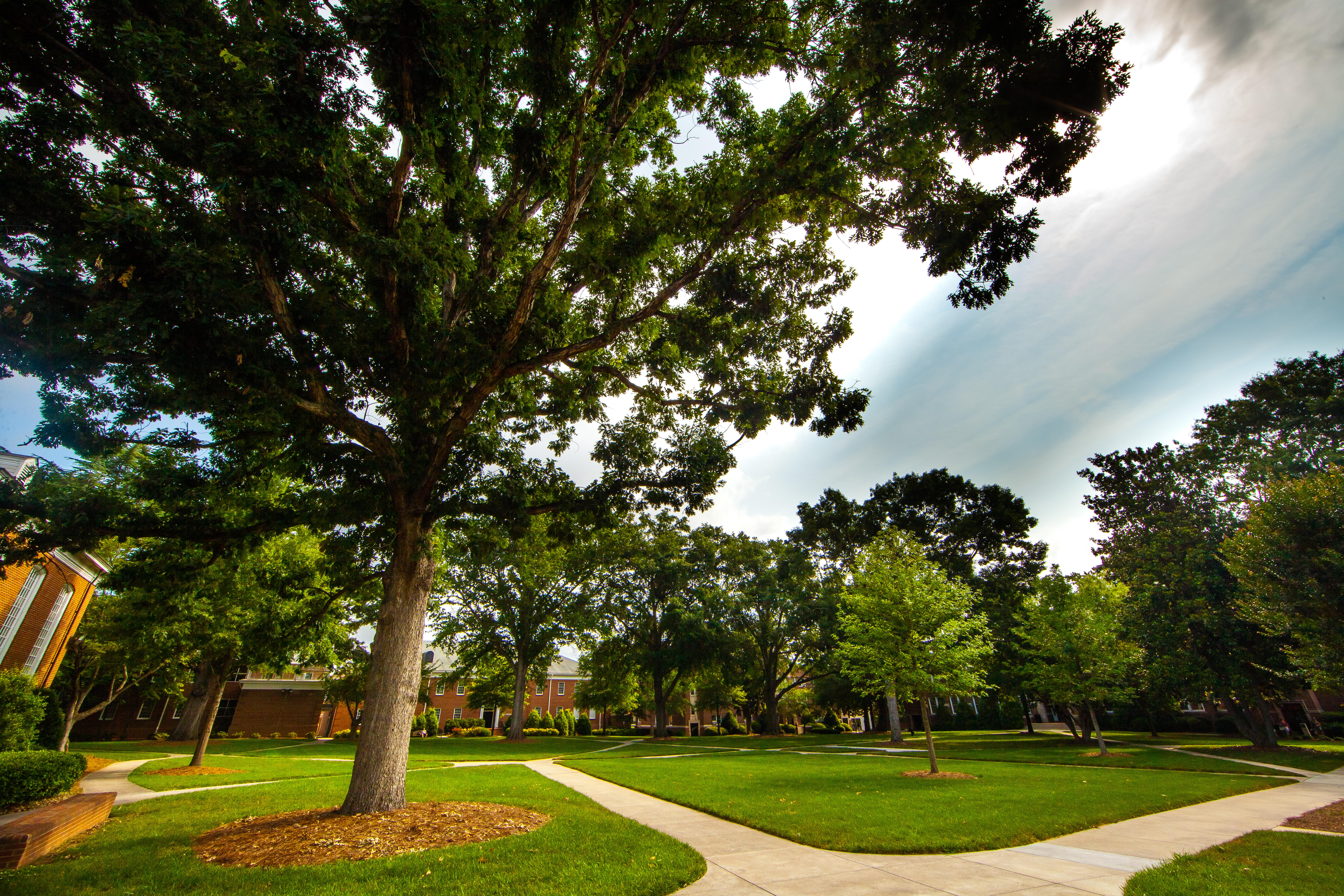 College - Wingate University  2