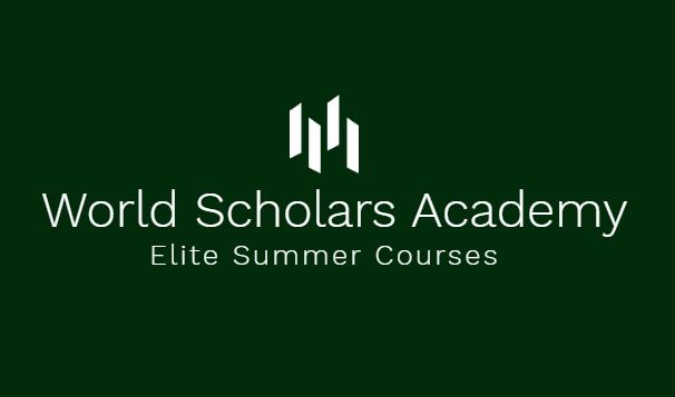 Summer Program - Engineering | World Scholars Academy Online | STEM Summer Courses