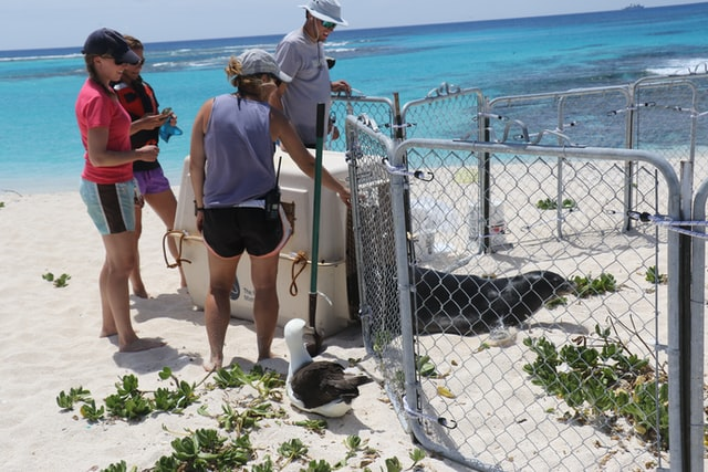marine biology summer program